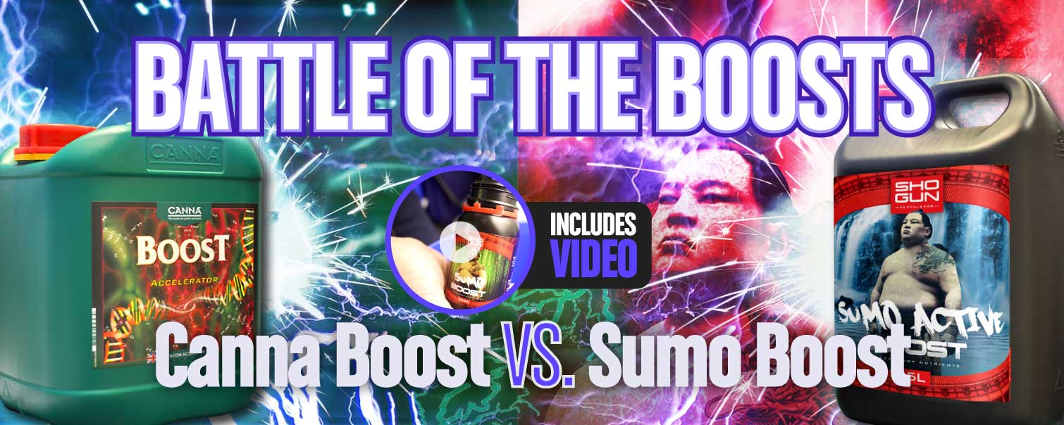 Battle of the Bloom Boosters: Canna Boost Accelerator vs. SHOGUN Sumo Active Boost