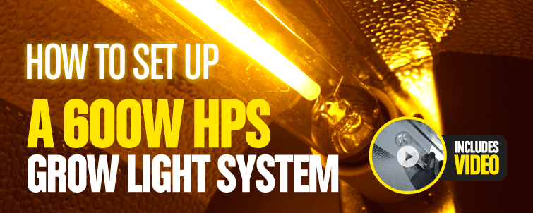 How to set up a 600W HPS grow light system