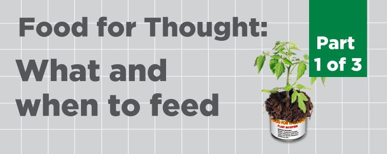 [Food for Thought] What and When to Feed (Part 1 of 3)