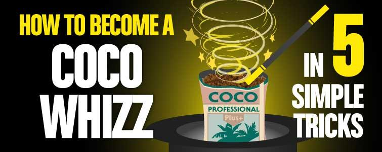 Be a Coco Whizz - Back to Basics