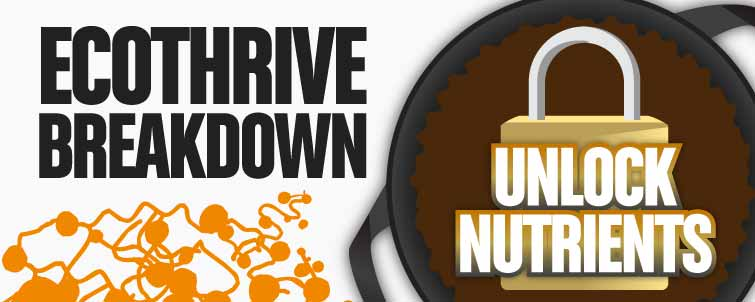 Ecothrive Breakdown – Unlock Nutrients