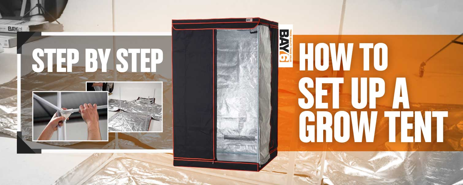 How to Set Up a Grow Tent [Step by Step]