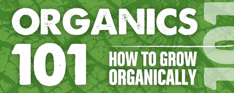 Organics 101 – How to Grow Plants Organically Like a Boss