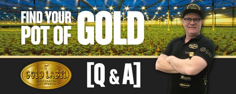 [Q & A] Find Your Pot of Gold