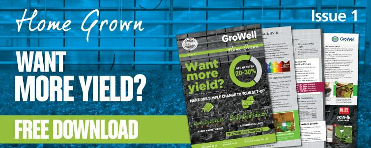 Want more yield? [Issue 1]