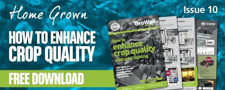 How to Enhance Crop Quality With Your Lighting [Issue 10]