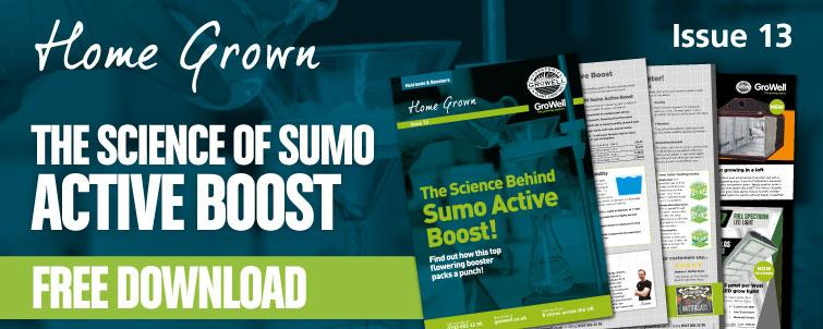 The Science Behind SHOGUN Sumo Active Boost [Issue 13]