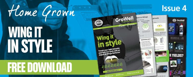 Wing it in Style! [Issue 4]
