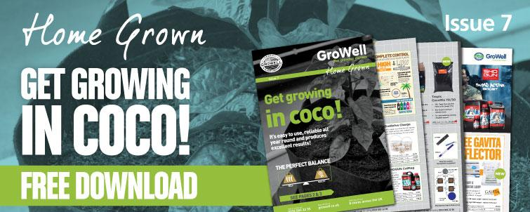 Get Growing in Coco! [Issue 7]