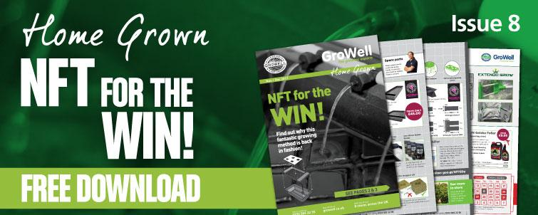 NFT for the WIN! [Issue 8]