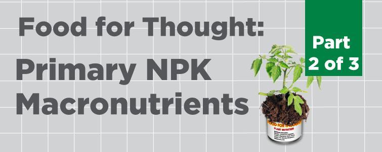 Food For Thought Primary Macronutrients Npk Part 2 Of 3