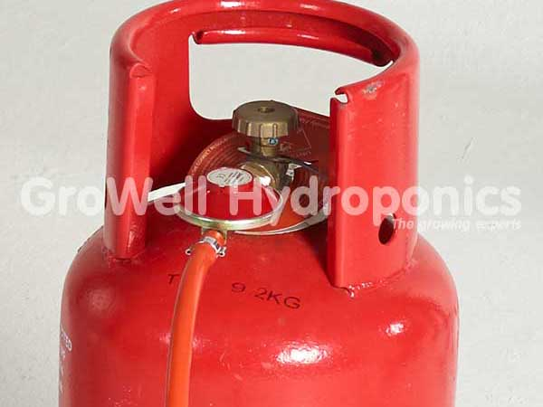 Open the brass valve on the propane bottle to check for leaks