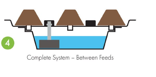 Eazy Plug Flood And Drain System - How it Works - Between Feeds