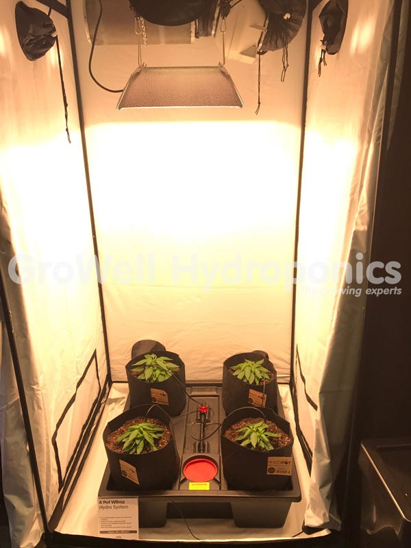 How To Build A Grow Room Beginner S Guide Growell Blog