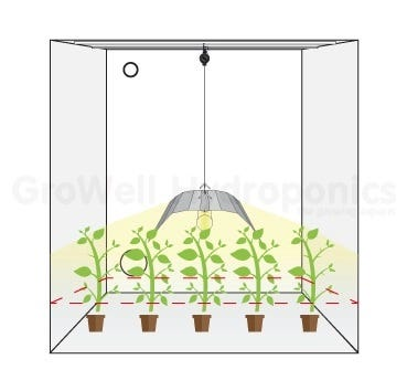 Hanging Heights Lamps