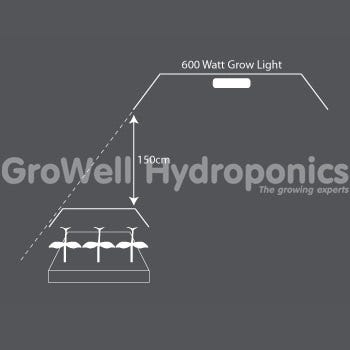 600W Lamp for Propagation