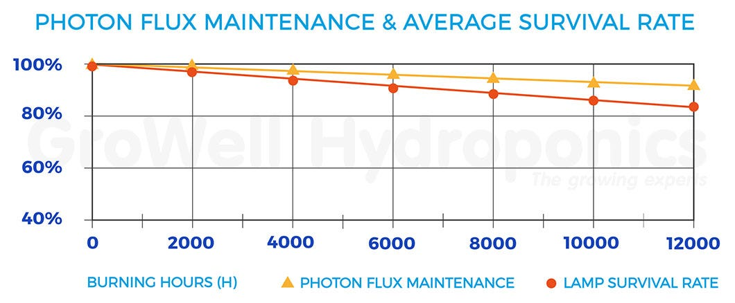 Photon Flux Maintenance & Average Survival Rate