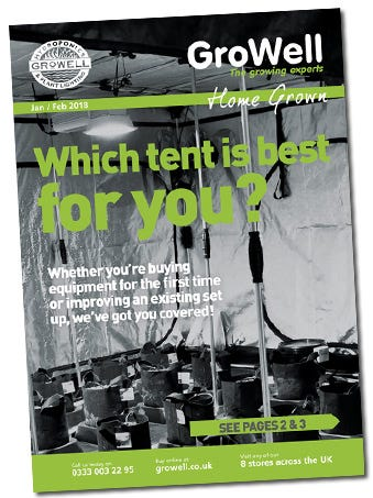 Which Tent is Best for You